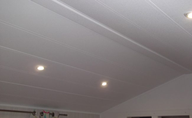 Decor panel roofing system